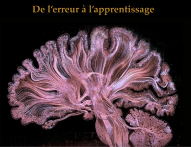 Read more about the article Conférence sur les erreurs et l'apprentissage