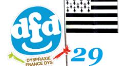 Visio DFD29